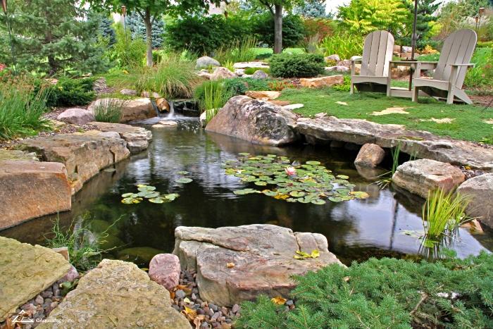 Backyard Koi Pond with Adirondack Chairs