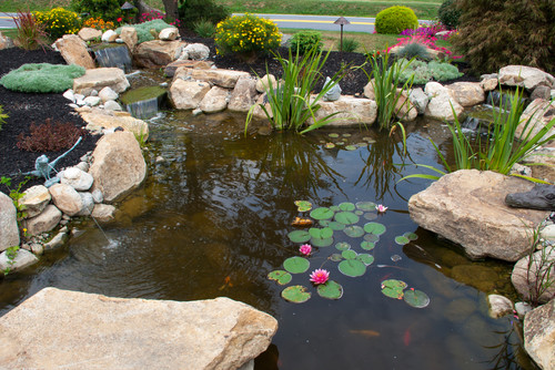 A beautiful pond with twin waterfalls transforms a front yard.