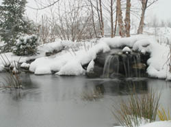 Aquascape Winter Pond